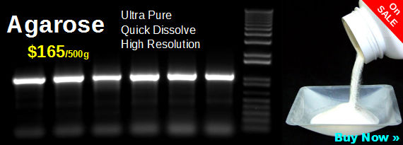 agarose-gel-cheap-DNA-RNA-ultra-pure-pcr