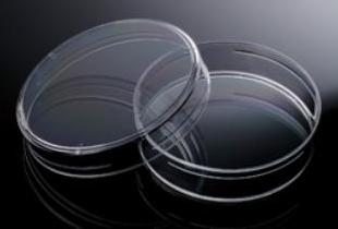 60mm-petri-dish-biologix-lb-plate-e.coli-yeast
