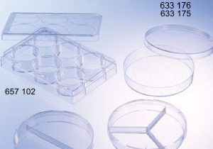 633176-germ-count-petri-dish-greiner-bio-one-sterile