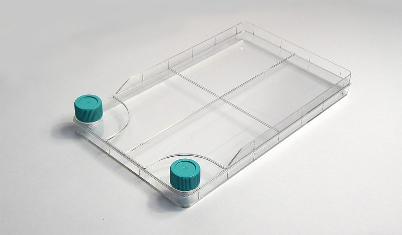 nest-tissue-cell-culture-chamber-single-layer-filter-cap