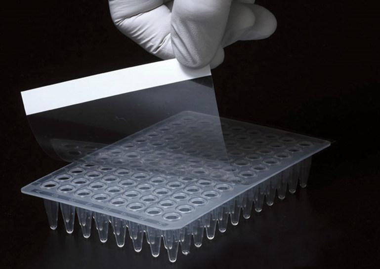 PCR-plate-membrane