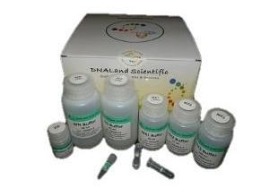 Plasmid-DNA-miniprep-kit-Qiagen-miniprep