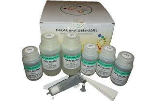 plasmid-dna-maxi-prep-kit-qiagen-maxiprep