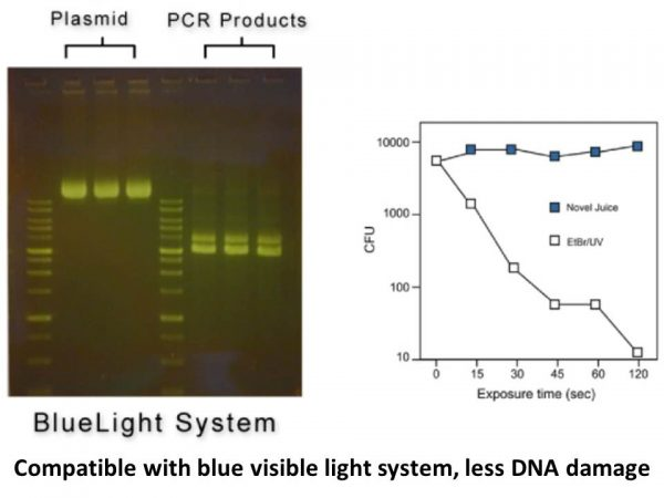novel-juice-non-toxic-dna-stain-solution-dye