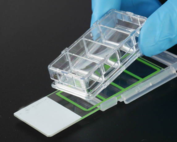 Chambered Cell Culture Slides Multi Wells 1 2 4 8