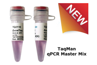 TaqMan-Real-Time-PCR-Master-Mix