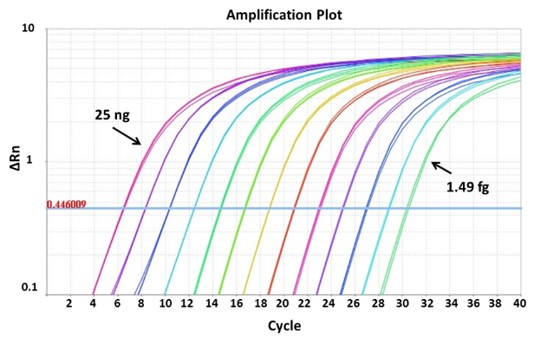 sybr-green-qPCR-Master-Mix-amplification-plot