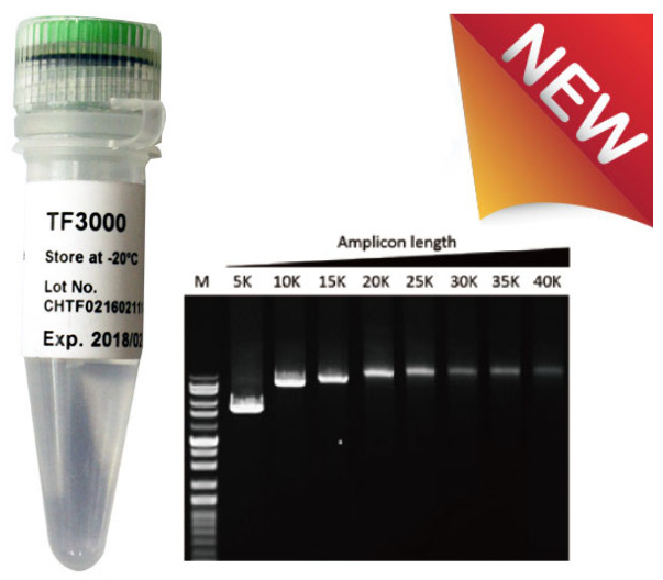 tf3000-long-pcr-high-fidelity-DNA-Polymerase-SMOBIO
