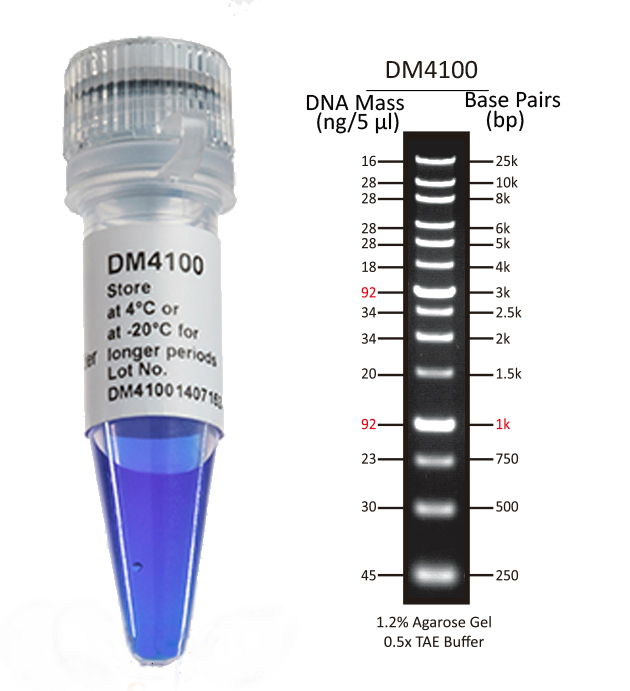25Kb-DNA-Ladder-DM4100
