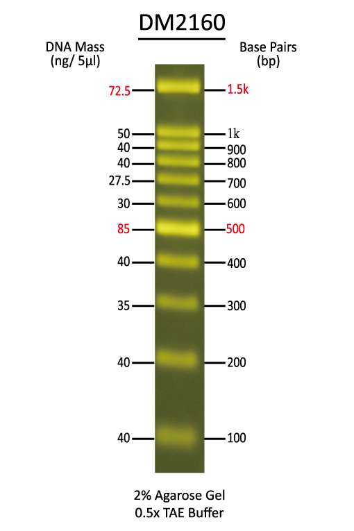 SMOBIO-DM2160-DNA-Marker