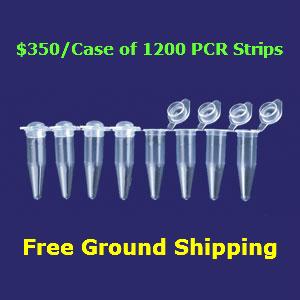 PCR-STRIP-DOME-CAP