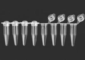 PCR-Strip